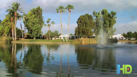 Club de vacances Shell à l'Orange Tree Golf Resort