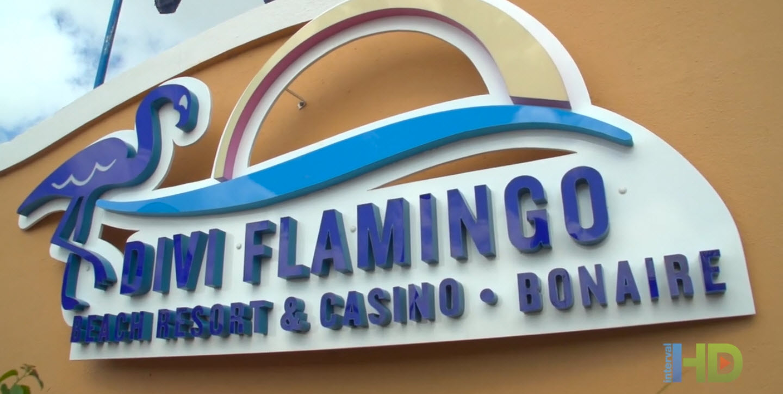 Divi Flamingo Beach