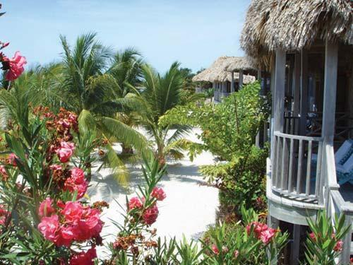 Rent timeshare at Captain Morgan s Vacation Beach Club